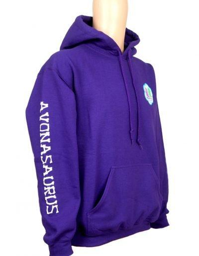Avonasaurus hoodie